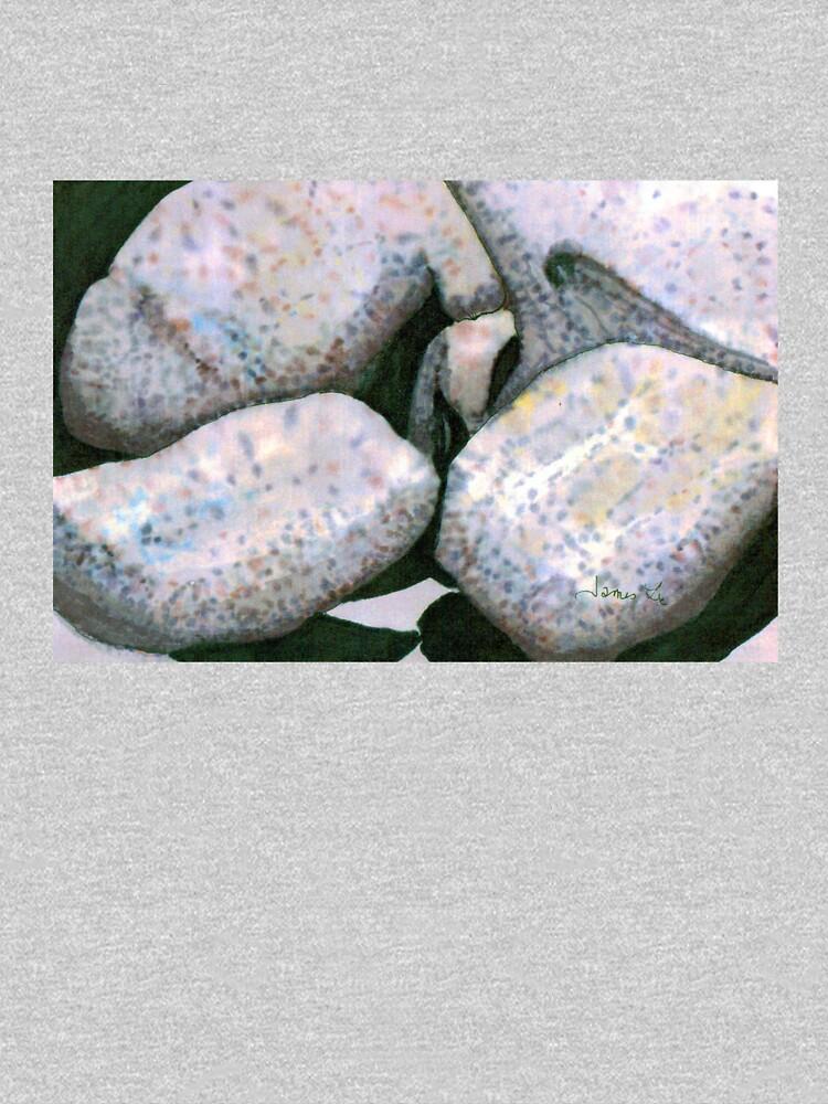 Big Boulders by JamesLHamilton