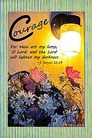 2 Samuel 22:29 Courage by Terri Chandler