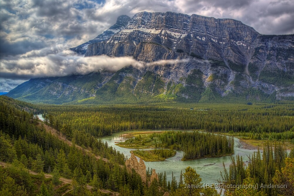 Bow Valley Green by James Anderson