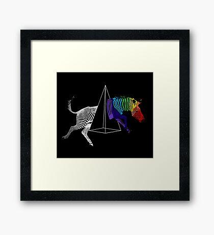 Zebraction Framed Print
