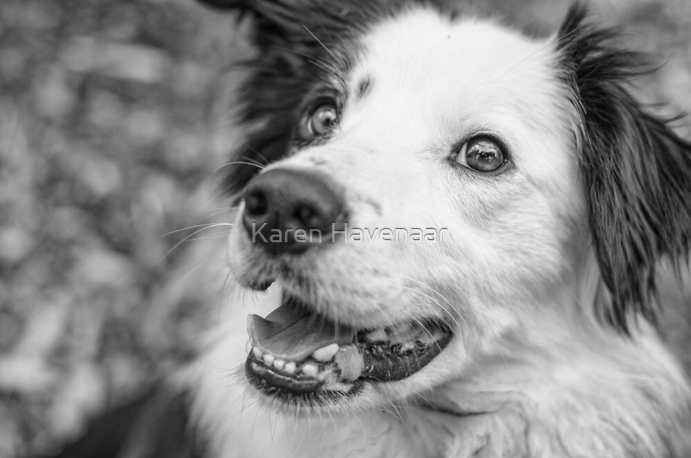 Norah in b&w by Karen Havenaar