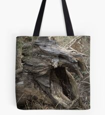 When Dinosaurs Roamed The Earth Tote Bag