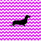 Perfectly Pink Chevron With Dachshund by pjwuebker