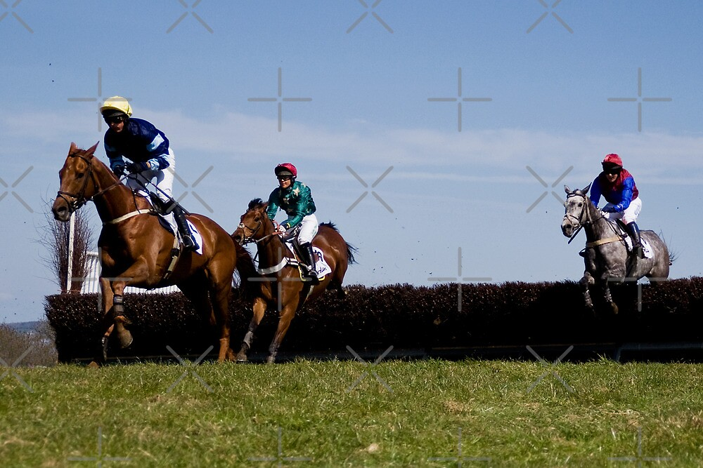 A Day at the Races by Country  Pursuits