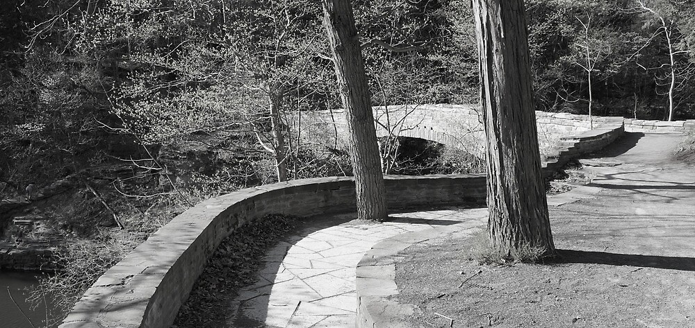 Sackett Footbridge, Spring 2013 by Mark  Reep