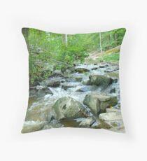 Autumn Comes Calling At The Unami Creek - Green Lane PA Throw Pillow