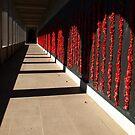 Australian War Memorial, Canberra - in memory........ by Bev Pascoe