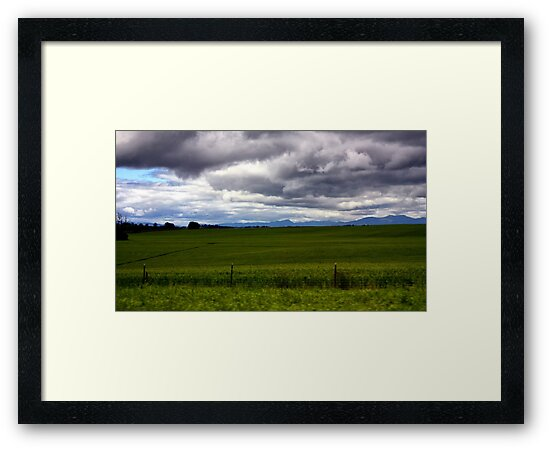 Green Field (S. Oregon) by ZWC Photography