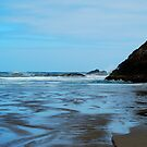 Indian Beach, Oregon by Tori Snow