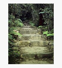 Steps to losing yourself Photographic Print