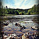 wheeling wv creek by lifewith4