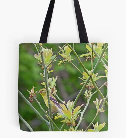 Female Goldfinch in Sassafras Tree Tote Bag
