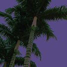 Purple Palm by Emily McAuliffe