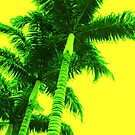 Yellow Palm by Emily McAuliffe