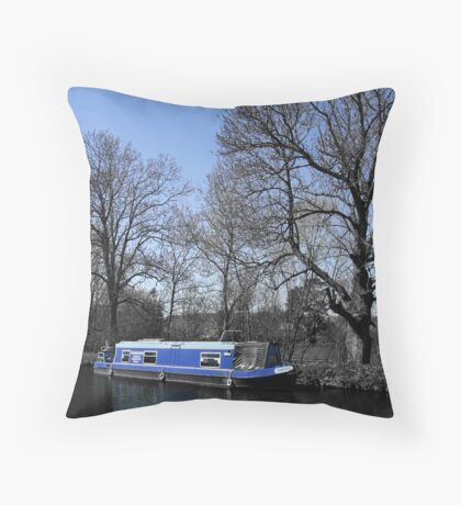 Blue And Bigger On The Inside? Throw Pillow
