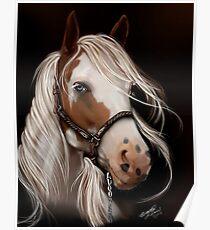 Soul Seeker Horse Art  Poster