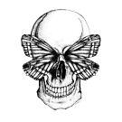 skull by sparklehen