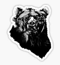 Bear Sketching Sticker