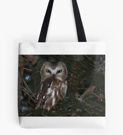 Saw-whet Owl Tote Bag