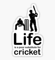 Cricket v Life - Marble Sticker