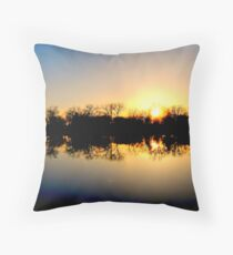 A Confession To The Creator Throw Pillow