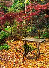 Garden table by vilaro Images