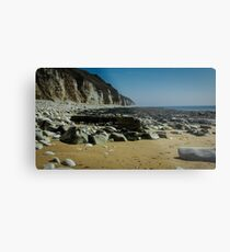 Flamborough Head at Danes Dyke Metal Print