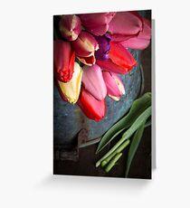 Spring Tulip Flowers Greeting Card