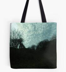 Enchanted Evening Tote Bag