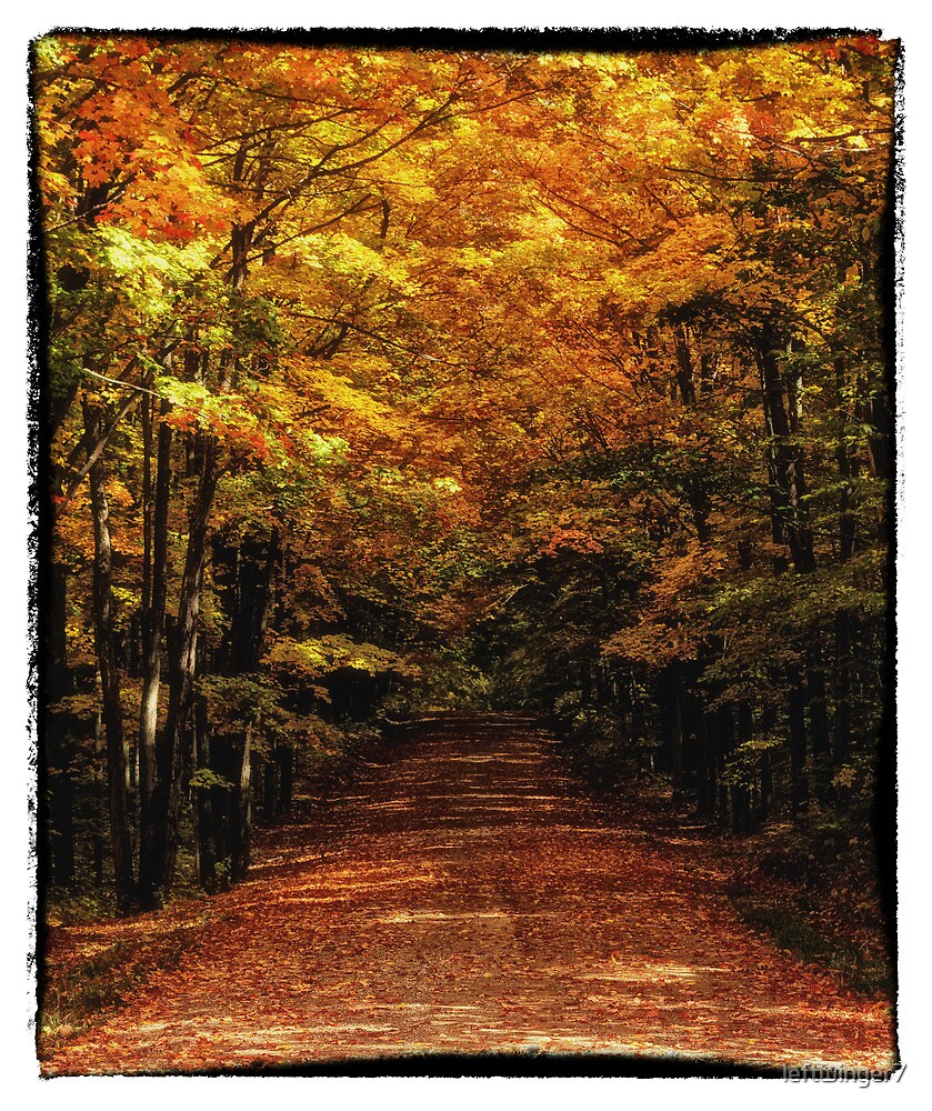 Colorful Trail  by leftwinger7