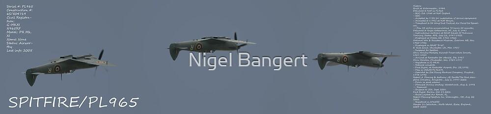 Supermarine Spitfire PR Mk XI PL 965 by Nigel Bangert