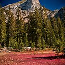 Cathedral Peak by Cat Connor