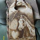 foal by lynnieB