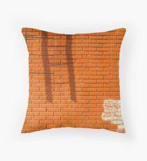 New York 4603 Throw Pillow