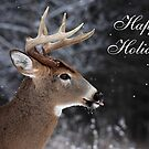 Deer Christmas Card  by Jim Cumming