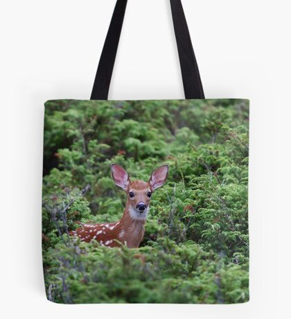 Fawn - White-tailed Deer Tote Bag