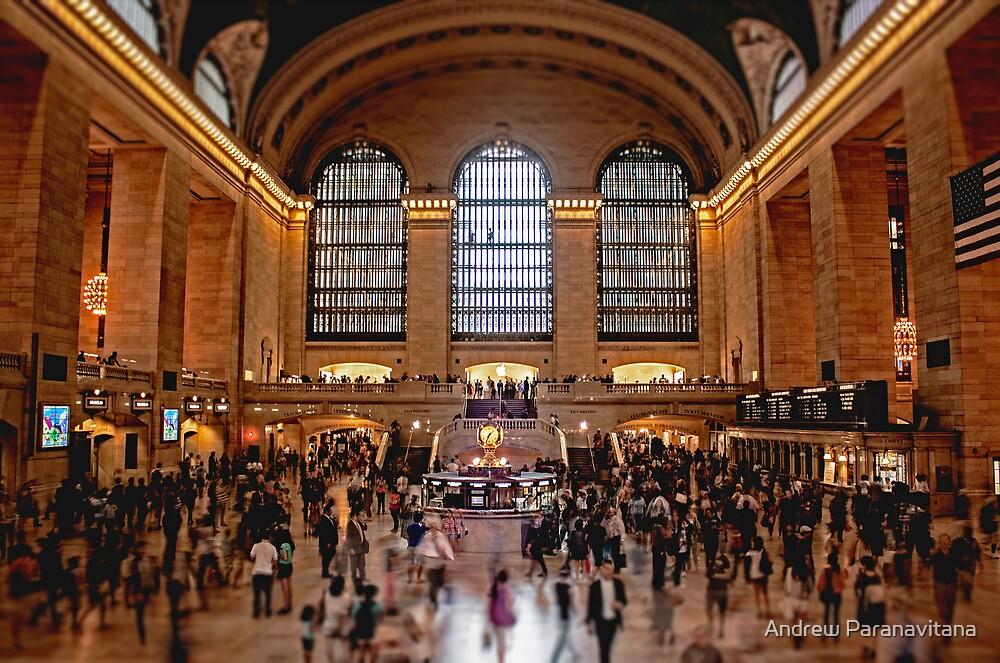 Grand Central by Andrew Paranavitana