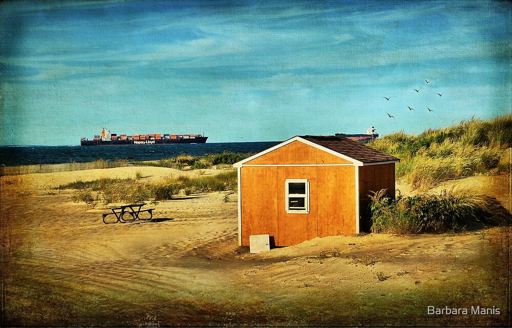 Beach Scene by Barbara Manis