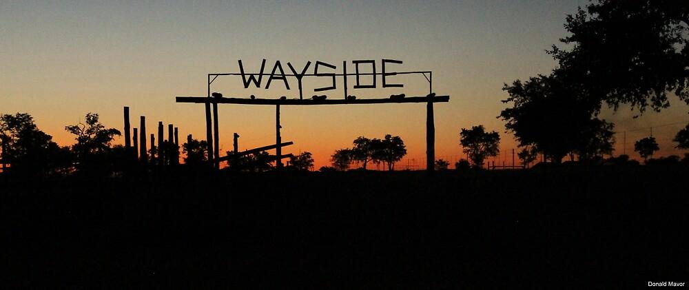 Wayside by Donald  Mavor