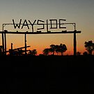 Wayside by Donald  Mavor