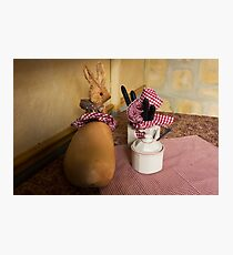 Table Bunny Photographic Print