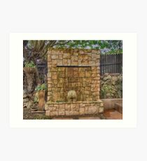 Garden Feature Art Print