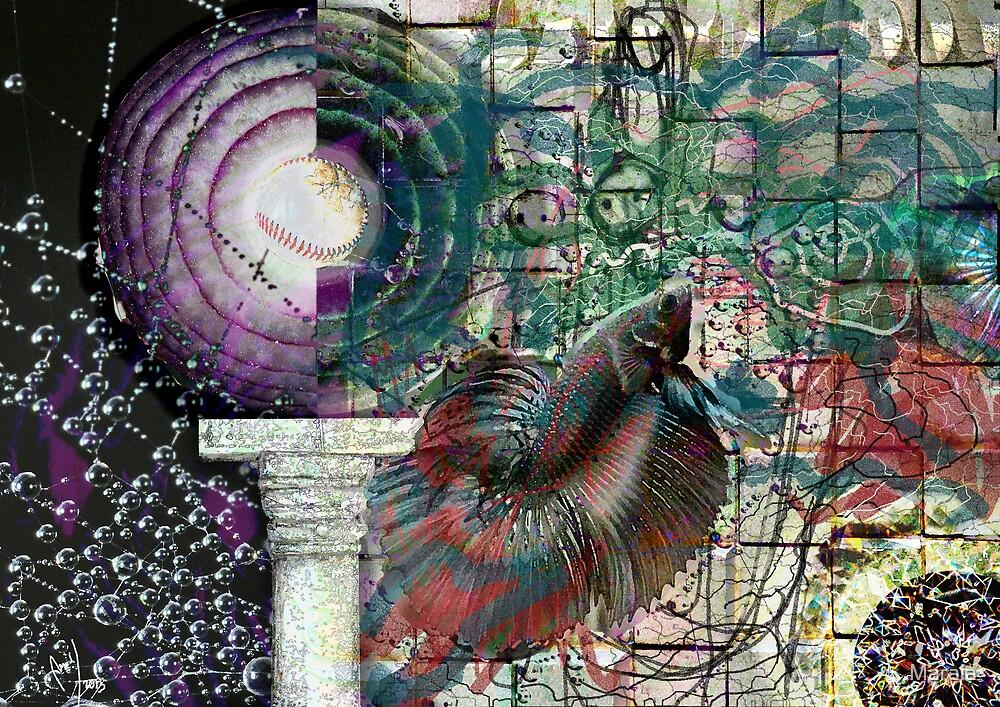 A Flutter Spreads by Maraia