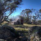 Wallace's Hut 2 by djzontheball