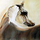 Mystical Arabian by Sybilla Irwin