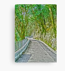 Victoria Peak path HDR Canvas Print