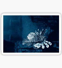 Lionfish Shipwreck Sticker