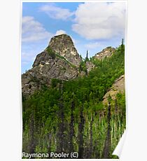 Hiking in Alaskas outback Poster