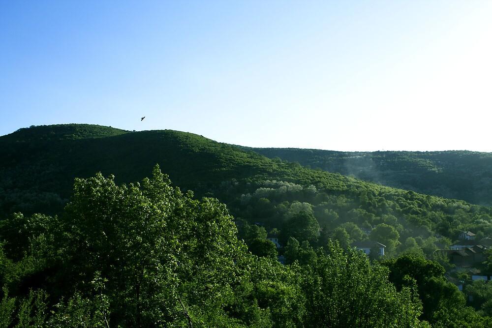 nature by slavikostadinov