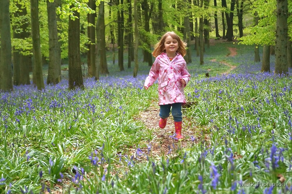 Holly in the Bluebells by Mark Thompson